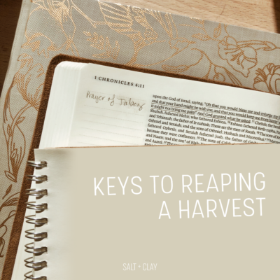 Keys to Reaping a Harvest
